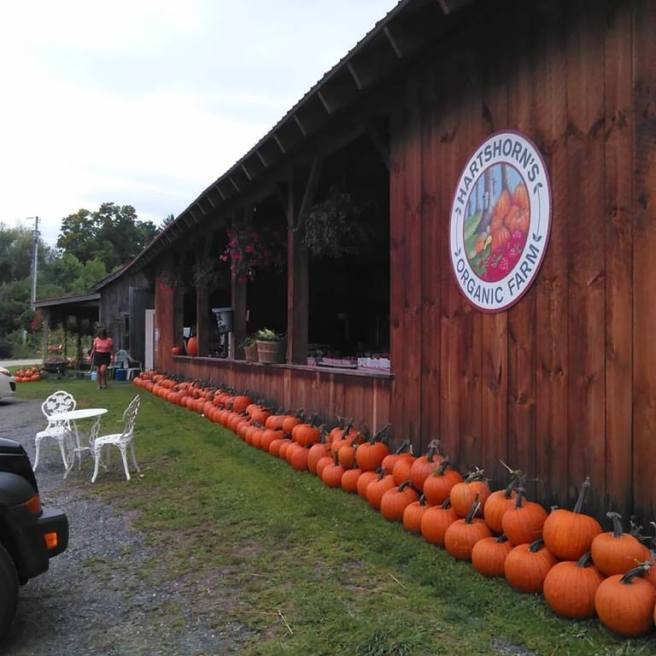 Hartshorn's Certified Organic Farm